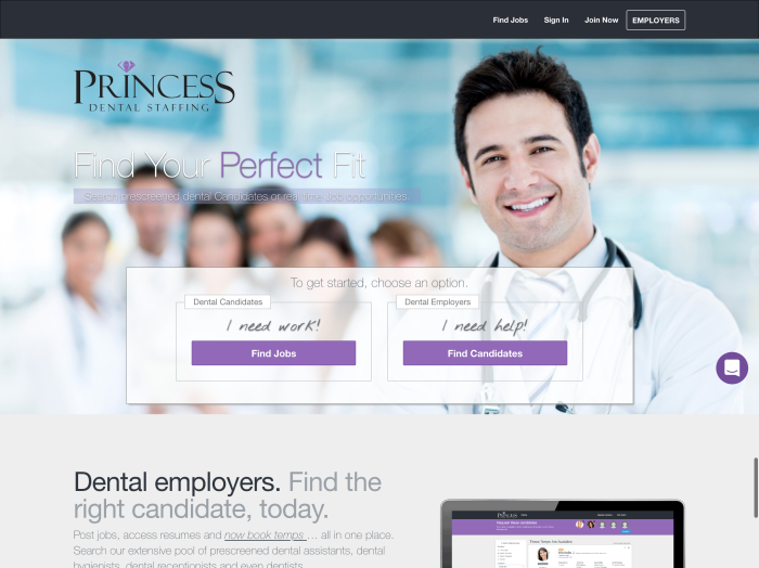 Princess Dental Staffing